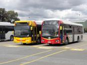 2 Scania Buses