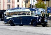 Royal Blue Bristol